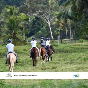 Horsing around Far North Queensland with MountRiding